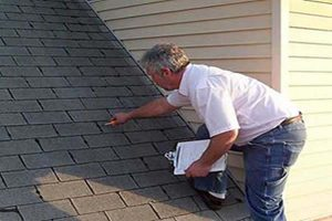 Prepare Your Flat Roof for Spring