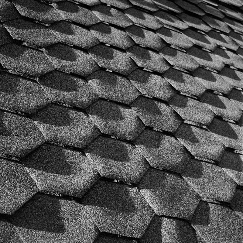 What Makes Asphalt Shingles So Special Denver Roofing